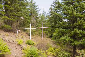 Crosses in mountainside clearing