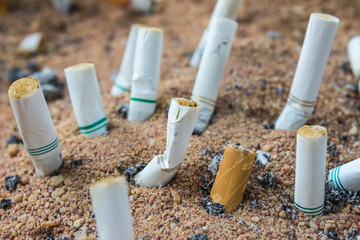 Pile of cigarette butts