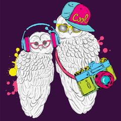 Cool owl vector. Card with owl-hipsters. Poster.