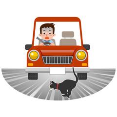 飛び出す猫を轢きそうな車