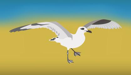 Чайка на песке у воды. Легкая летняя иллюстрация