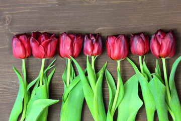 Bouquet of red tulips