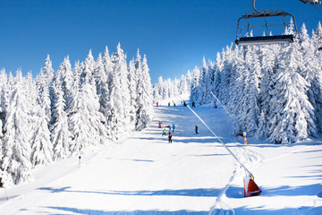 Ski resort, ski slope, ski lift, skiers on the piste among white snow pine trees forest