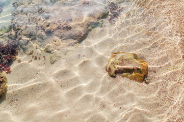 Sea water abstract natural background
