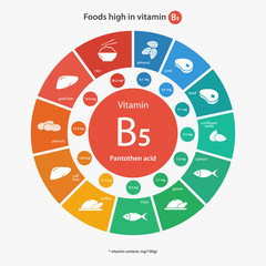 Foods high in vitamin B12  Vitamin content of foods  Healthy