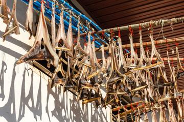 Piezas de pescado desecando. Curadillos. Cudillero, Asturias.