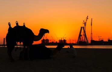 Dubai silhouette at the sea sunset
