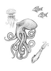Octopus, jellyfish, squid, fish