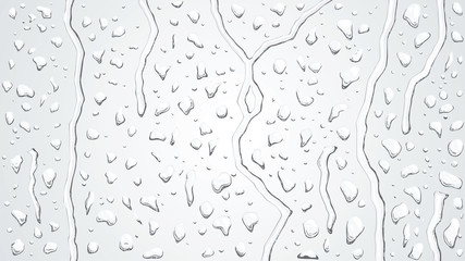 Raindrops on the window. Vector background