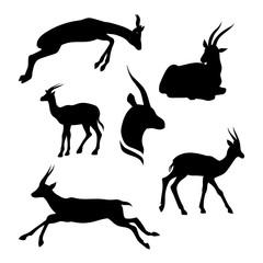 Gazelle set vector