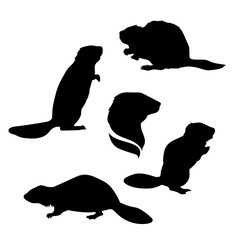 Beaver set vector