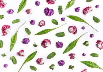 Various salad leaves on a white background