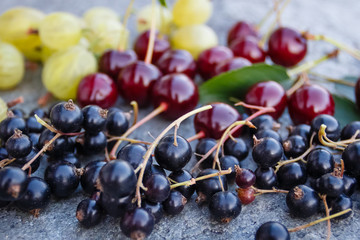Mix of fresh and juicy cherries, black currant and gooseberries in the summer garden on a grey stone