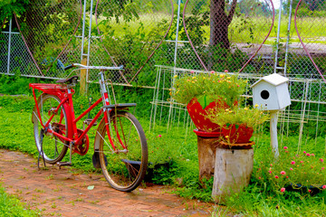 Old bike parked in the garden