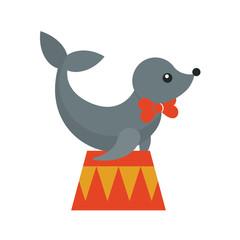 circus seal animal on a pedestal
