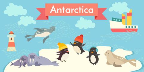 Antarctica cartoon animals vector illustration set. Penguin, walrus, seal, lighthouse, boat.