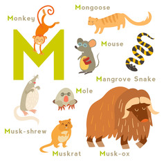 M letter animals set. English alphabet. Vector illustration, isolated on white background