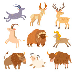 Cattle wild set. Cartoon flat animals. Vector illustration, isolate on white  background