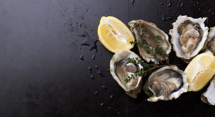 Wall Murals Seafoods Fresh Oysters in shell with lemon