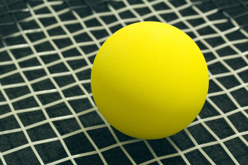 Racquetball on racket strings. Yellow frontenis ball laying on r