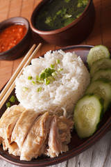 Hainanese chicken rice with cucumber close-up and broth. vertical