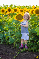 Little girl in striped dress and rubber boots is in a field of sunflowers. Sunny summer evening on countryside.