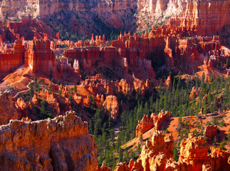 The Bryce Canyon National Park, Utah, United States