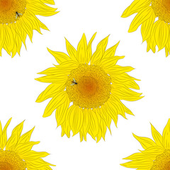 Sunflower seamless pattern. A bee collects nectar from a sunflow
