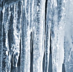 Bright spring background with icicles in the sunlight