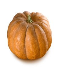 Isolated image of a ripe pumpkin close-up