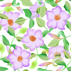 Vector seamless pattern displaying bold flowers. Elegance Seamless background with of flowers. Floral vector illustration.