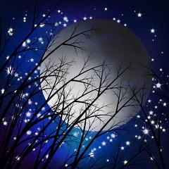 Moon night landscape. Vector illustration