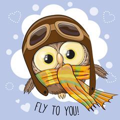 Little Owl Pilot