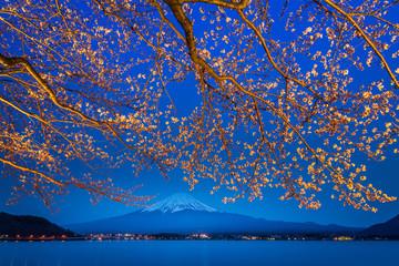 sakura flower branches with fuji mountain and lake background