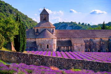 Papiers peints Lavande Lavender fields at Senanque monastery, Provence, France
