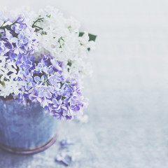 Bunch of white and purple lilac flowers in metal vintage bucket, copy space on grey background