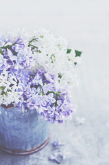 Beautiful bouquet of purple and white lilacs on grey background