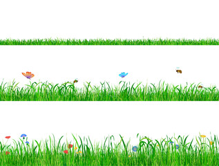 Green grass backgrounds borders with flowers, butterflies and bees.