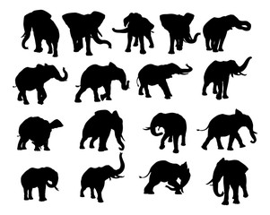Elephant Silhouettes Set
