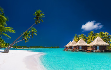 Beach villas on a tropical island with palm trees and white beac