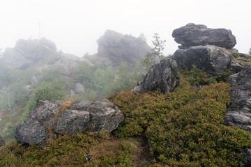 Felsen am Silberberg