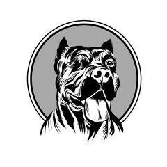 Vector illustration  pitbull mascot head, on a white background