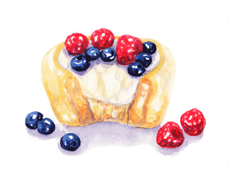 Watercolor fruit tart cheesecake with berries on white background