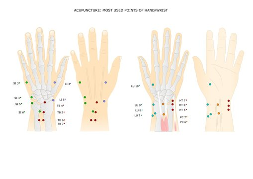 acupuncture: main points of the hand and the wrist
