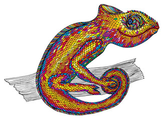 Chameleon.Profile Lizard.