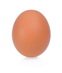 Fresh chicken egg isolated on white background.