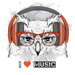 The image of the owl in the glasses and headphones. Vector illustration.