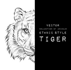Door stickers Hand drawn Sketch of animals Hand draw tiger portrait. Hand draw vector illustration