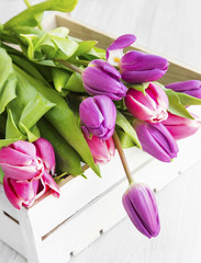 Purple and pink tulips in a wooden white box