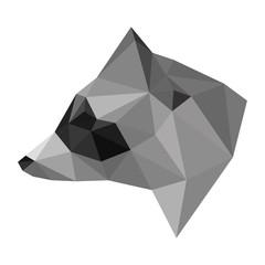 Abstract polygonal geometric triangle raccoon head isolated on w